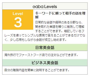 GABA レベル3の内容